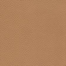 Elmo Rustical 43632 beige