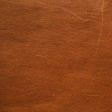 Tärnsjö 8695 wild nature (matches support leather shoulder whiskey)