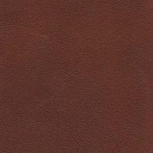 'Medium brown' from Tärnsjö