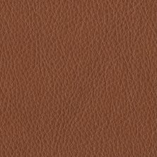 'Cognac' 43807 Elmotique from Elmo